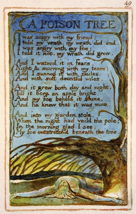 themes of innocence in the works of william blake An analysis of the chimney sweeper in the songs of innocence(this analysis is for songs of innocence for the songs of experience analysis, follow the link) by william blake reveals a plead for social justice.